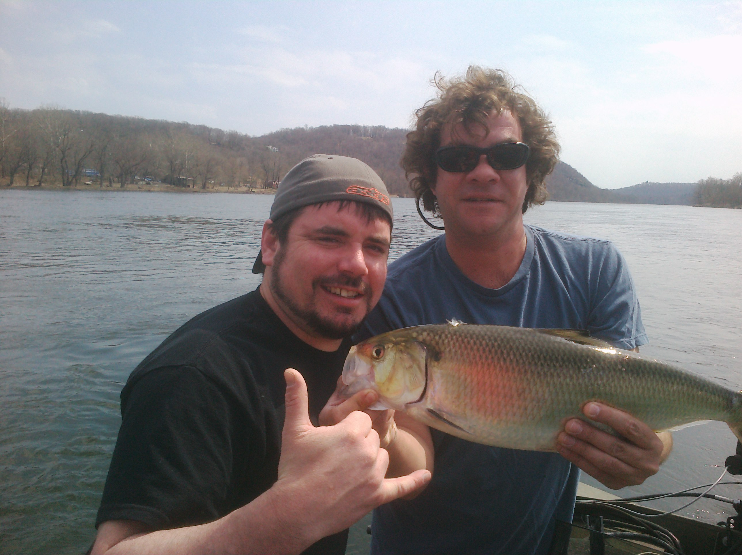 Stupid good shad fishing today 4 4 2011 mickey 39 s guide for Is fishing good today