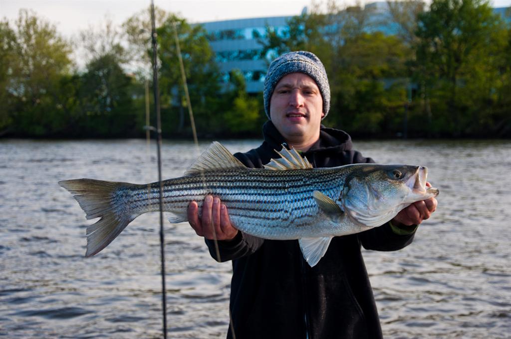 20110505_Fishing-19 (Large)
