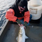20110505_Fishing-2 (Large)