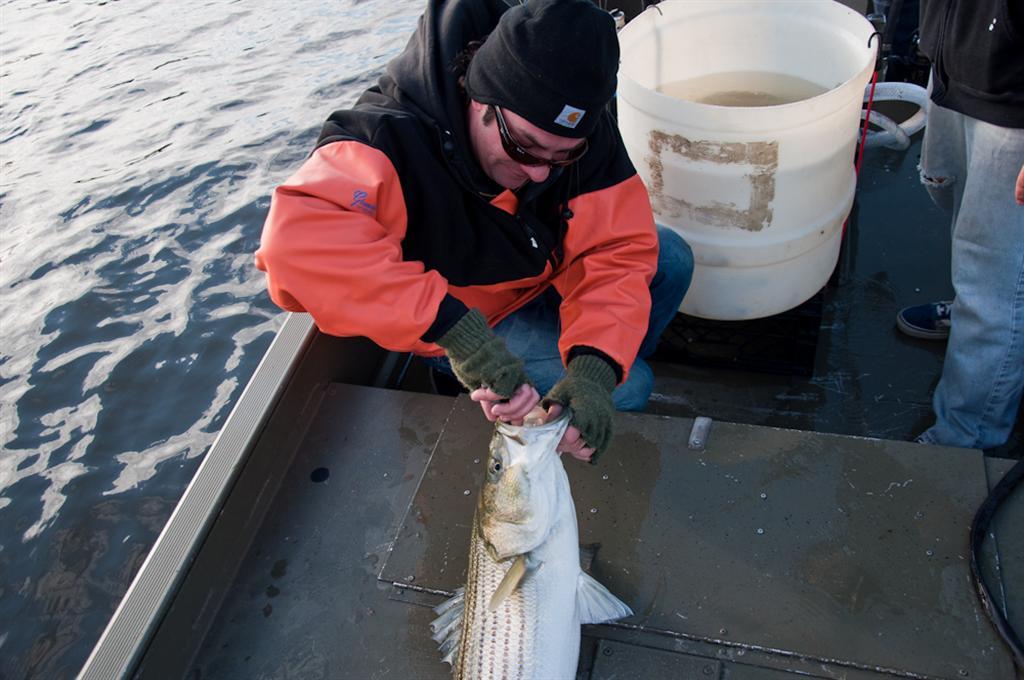 20110505_Fishing-2 (Large)