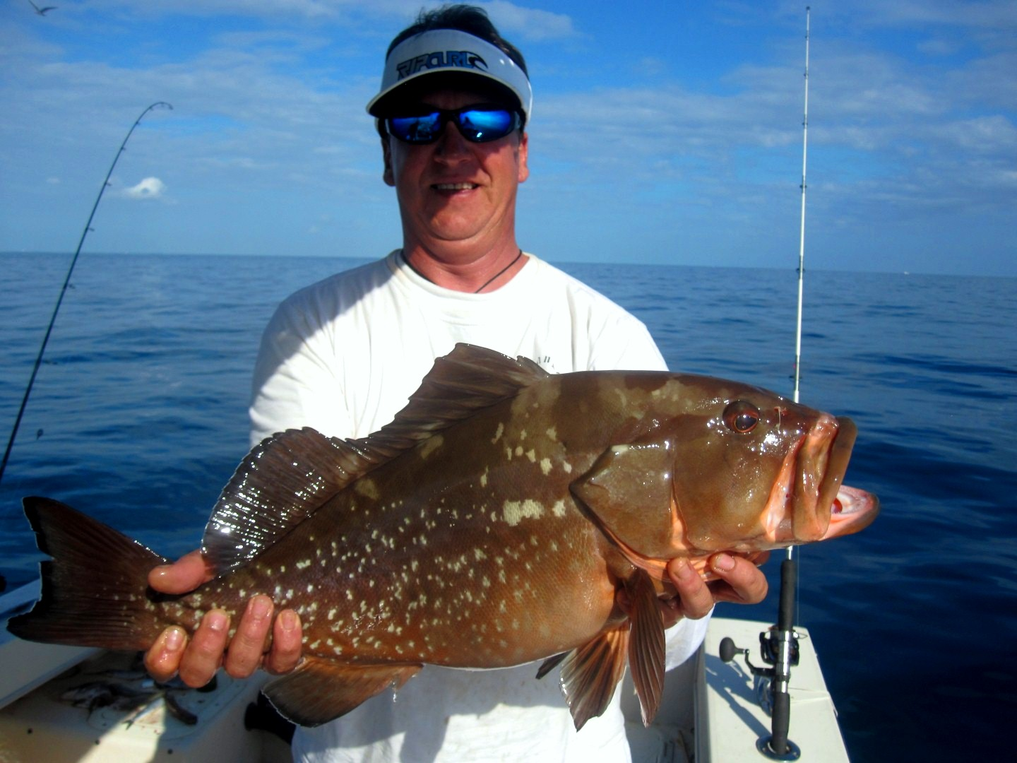 Key west report 1 18 2012 mickey 39 s guide service for Keys fishing report
