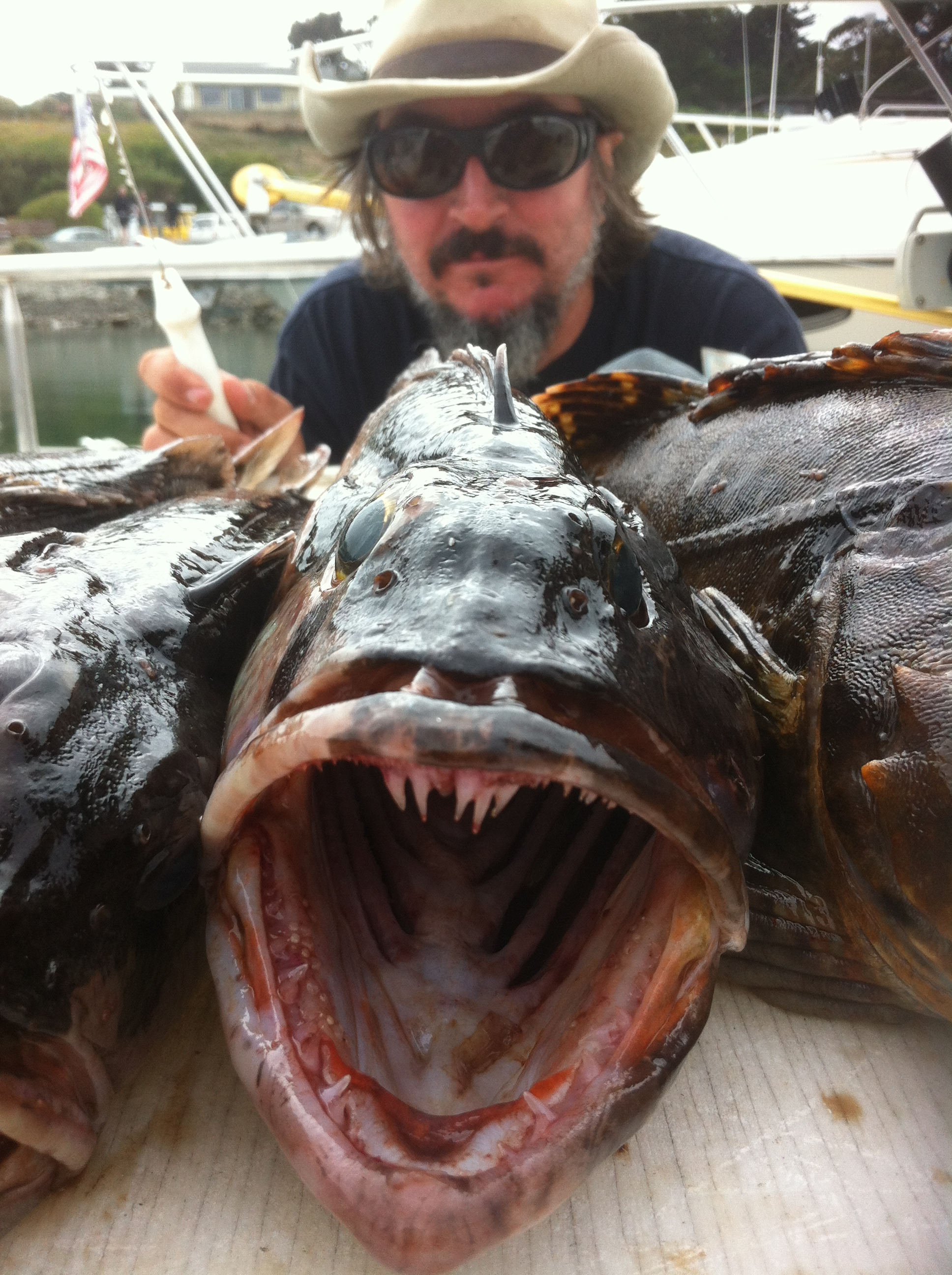 Fishing with les claypool 8 15 2012 mickey 39 s guide for Sfbay fishing report