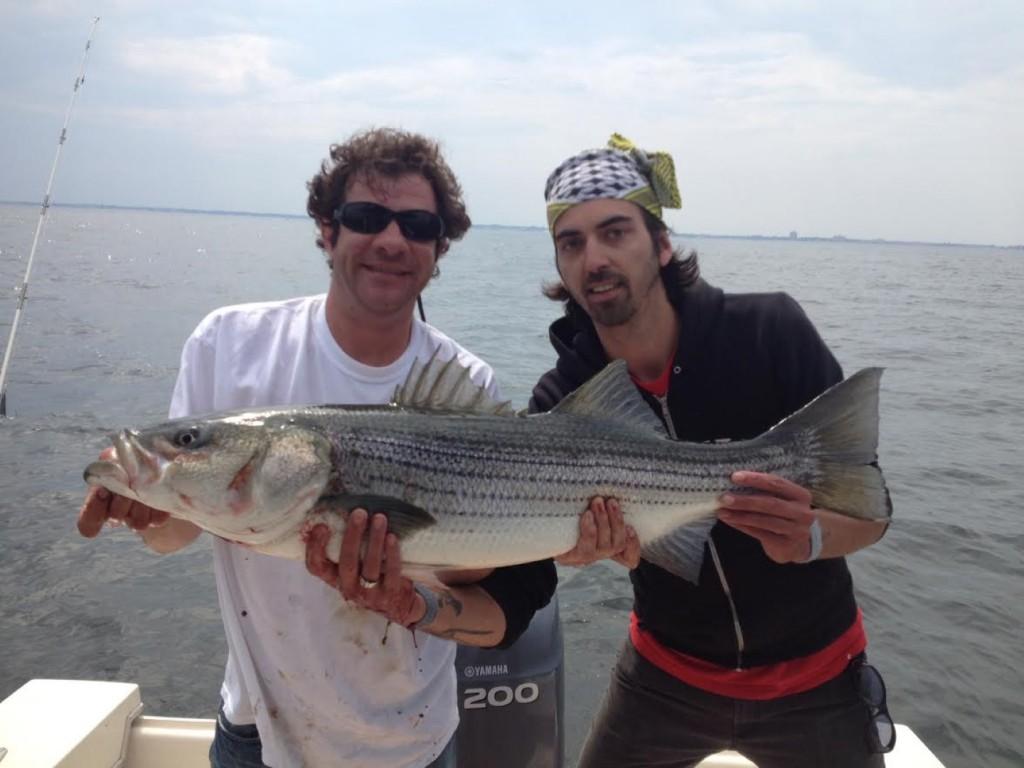 bassy35435 (Large)
