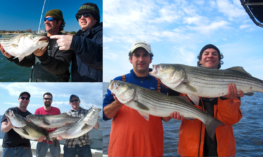 Fall Striped Bass fishing